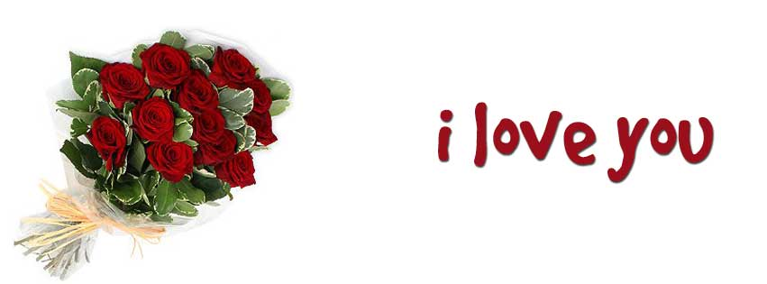 meaning of one dozen red rose in valentine day