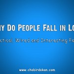Why Do People Fall in Love -Practical, Wired and Interesting Facts
