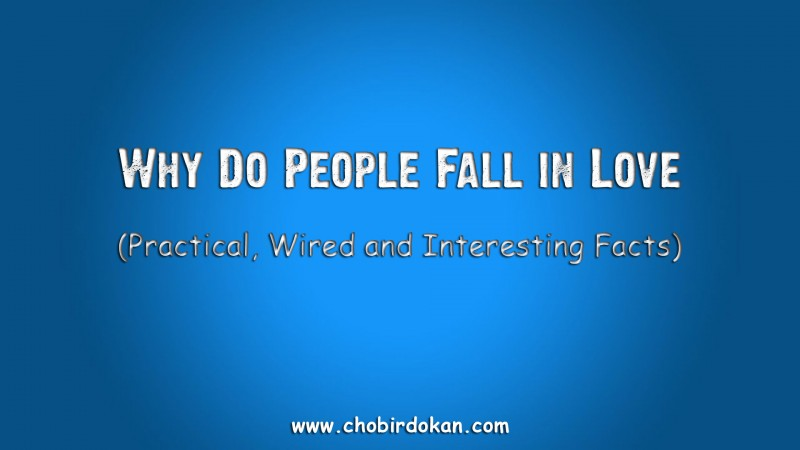 Why Do People Fall in Love