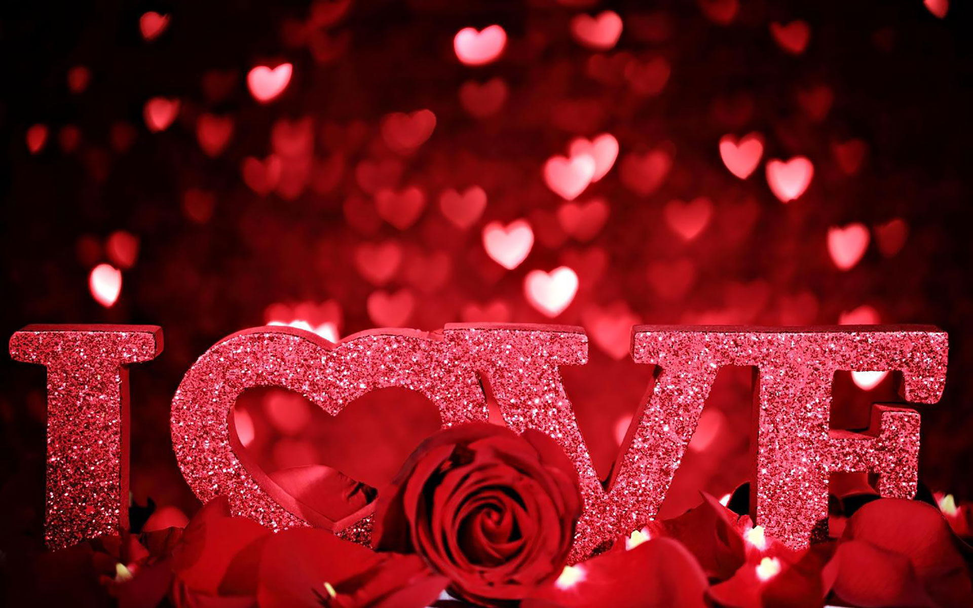 Cute And Beautiful Love Wallpaper Free Download Hd