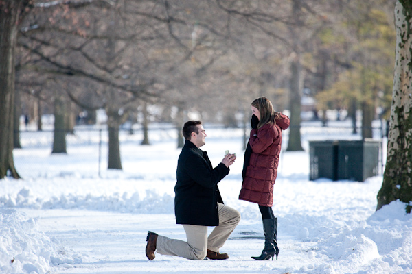 will you marry me ideas